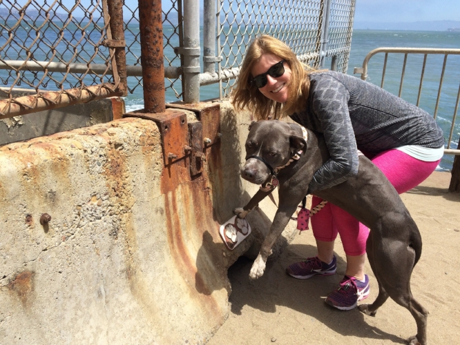 Attempting (failing) to get Petunia to pose with the paw prints at Hopper's Hands at Fort Point