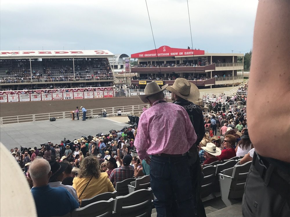 Our seats for the rodeo (that guy is about to go flying over the stands)