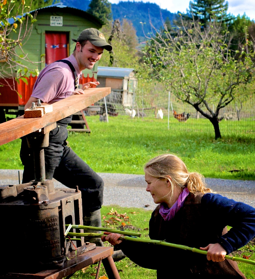 The Chattanooga Sorghum Press we used had been making its rounds in the  Anderson Valley - anyone willing to pass it on in good condition (which  basically ...