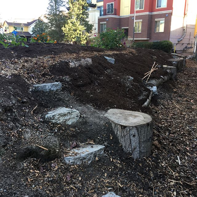 Shout out to @hg_organics for their awesome work on this slope at The Wetmore Community Farm. I can't wait to fill it with plants. I can just picture people grazing on berries as they walk through this space. #urbanfarming #communitybuilding #southseattle #seattledepartmentofneighborhoods #sdot