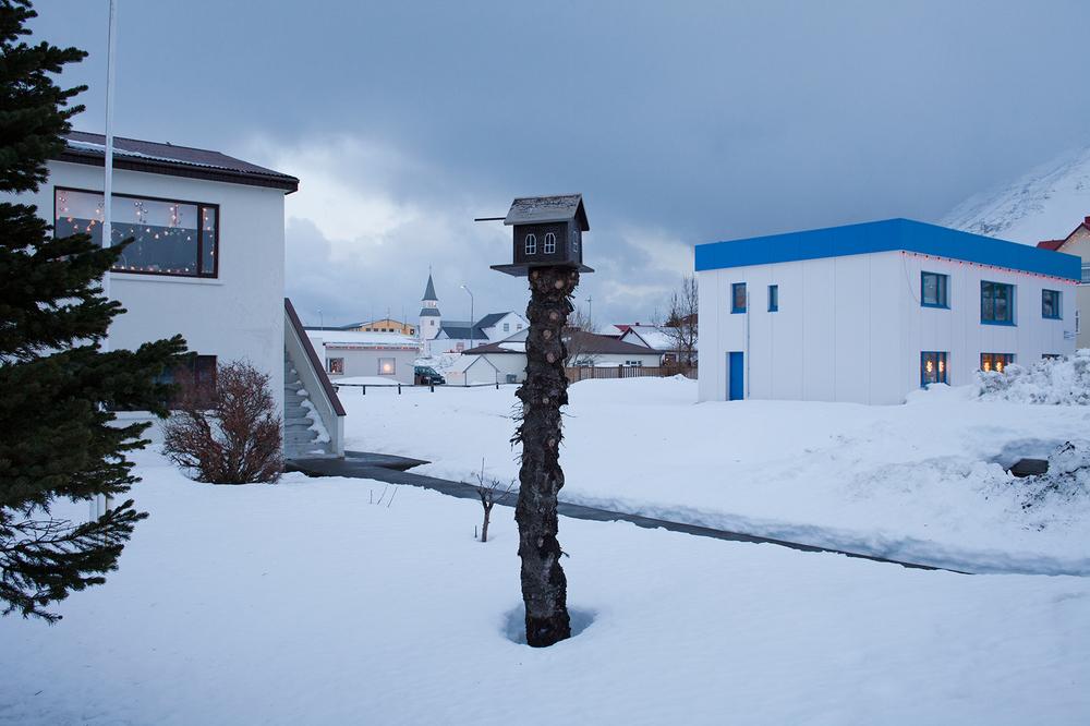 "66°04'22.0""N 18°38'56.9""W ,   23/12/2014, 1430 Birdhouse,  Ó lafsvegur,  Ólafsfjörður, Iceland"