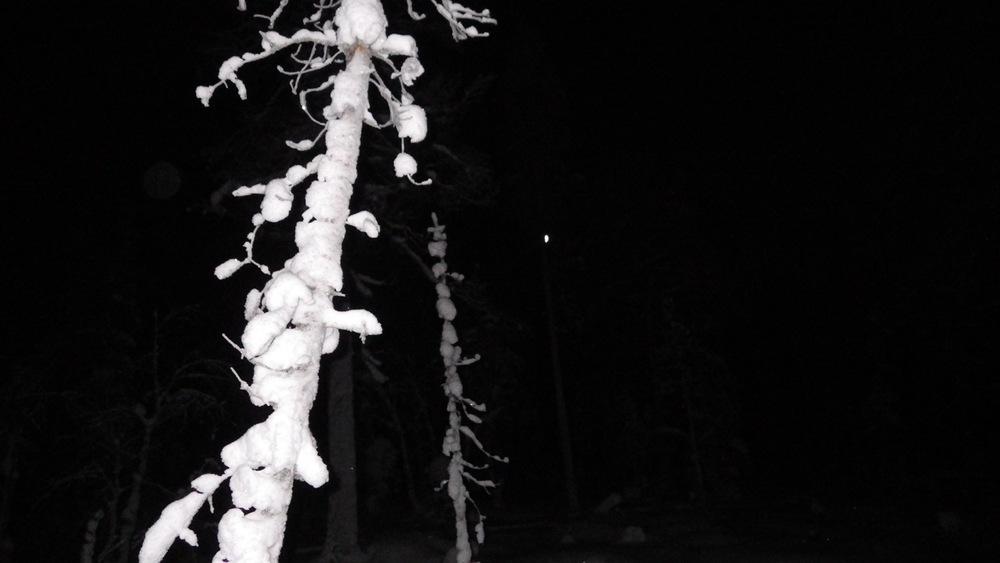 BW snownight.jpg