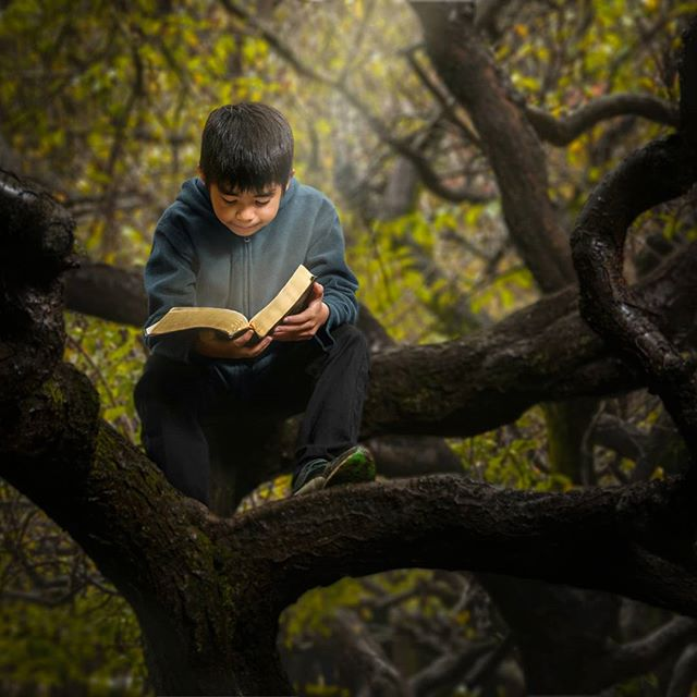 Boy and the book. www.josepd.com/blog #storytelling #portrait #boy #reading #book #serenity #forest #thearcanum