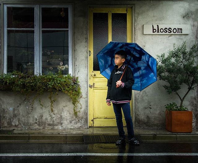 Boy in the rain  #boy #rain #umbrella #blossom #cloud #thearcanum #spring  #blue