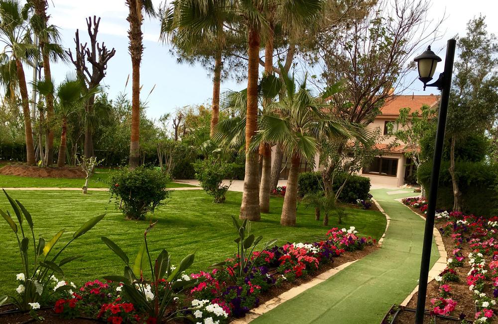 middle garden.jpg