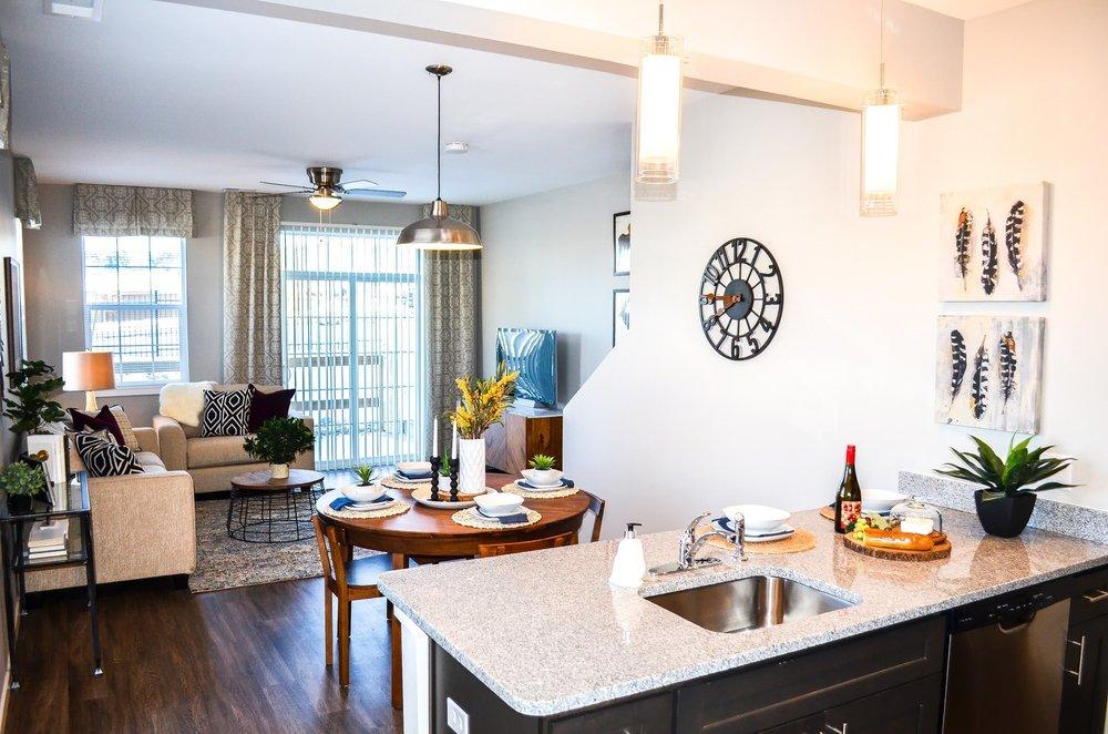 Kitchen and living room - Model Apache.jpg