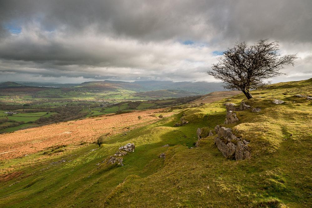 Wales-4.jpg