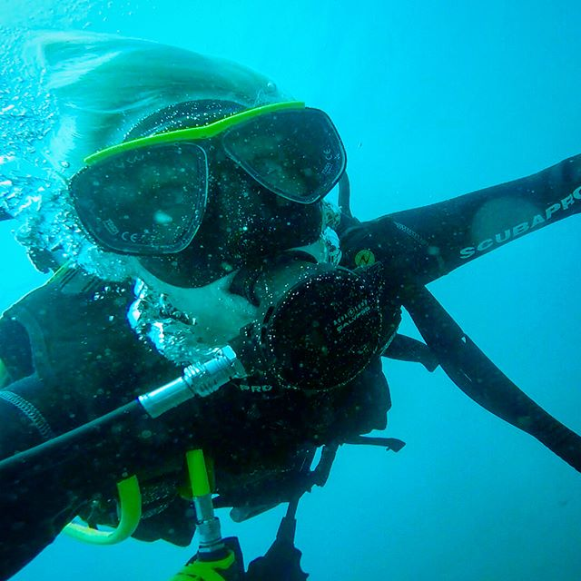 "🐢🐠Under the sea🦐🐚/ ""Darling it's better, Down where it's wetter. Take it from me."" Thought we might have to cancel the dive because of 5 meter swells that 'stranded' us in this tropical paradise for 3 days. But we managed anyway! Most of this was me filming by accident 😂. The current was so strong I basically rolled along like a sea cucumber for half a mile.  More pics to come... not so great at the 'insta' thing..."