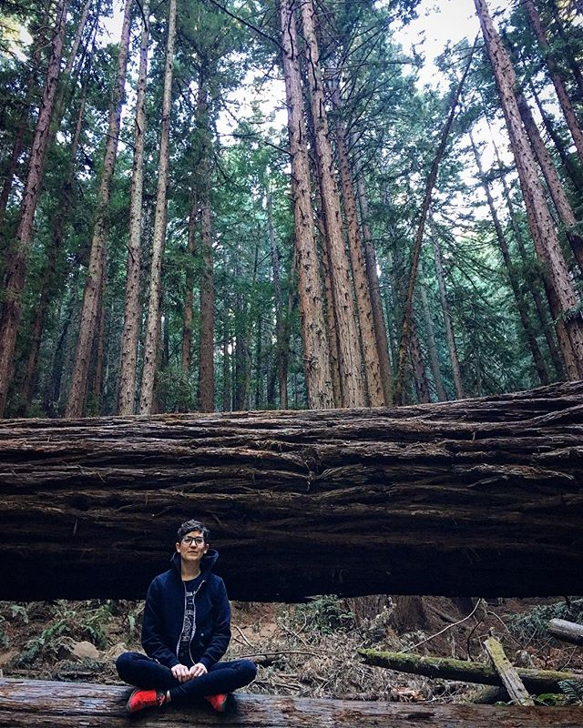When you get to hang out with some Redwoods and your boo since the 4th grade all in one day!