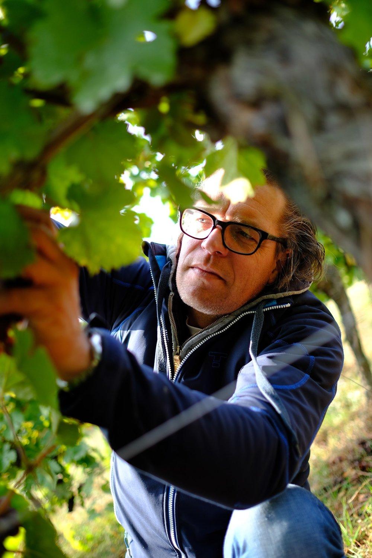 fotoreportage-wijn produceren-Vignoble des 2 lunes-Bosman Wijnkopers-460.jpg