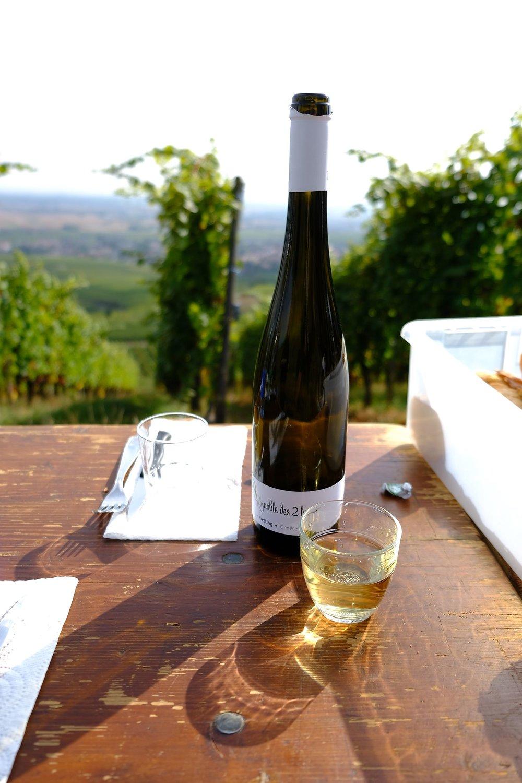 fotoreportage-wijn produceren-Vignoble des 2 lunes-Bosman Wijnkopers-466.jpg
