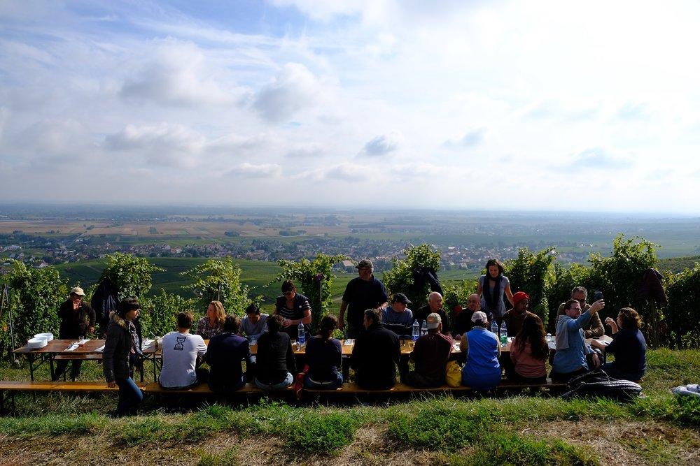 fotoreportage-wijn produceren-Vignoble des 2 lunes-Bosman Wijnkopers-465.jpg