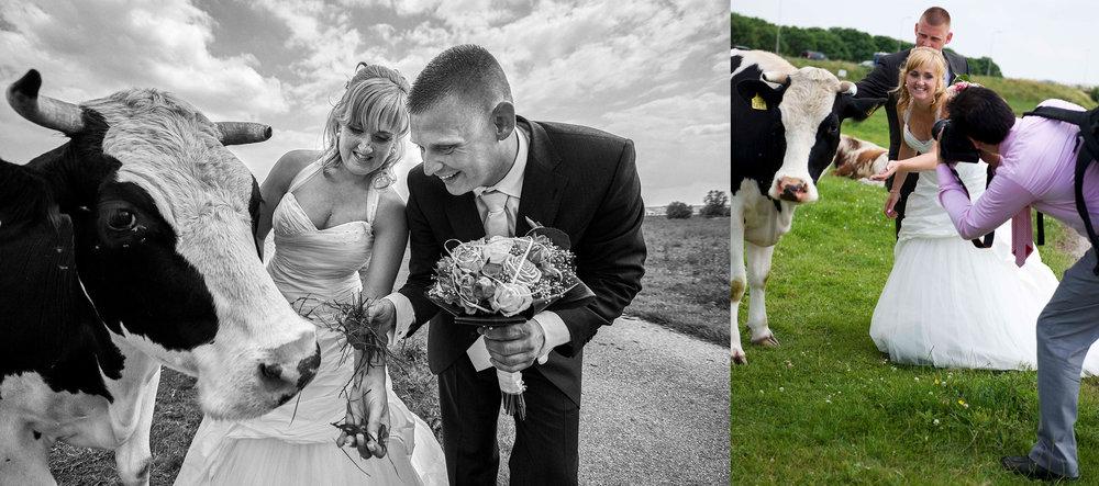 Hier zie je me aan het werk op de bruiloft van Alex en Evelyn. Links het eindresultaat en rechts een foto achter de schermen.