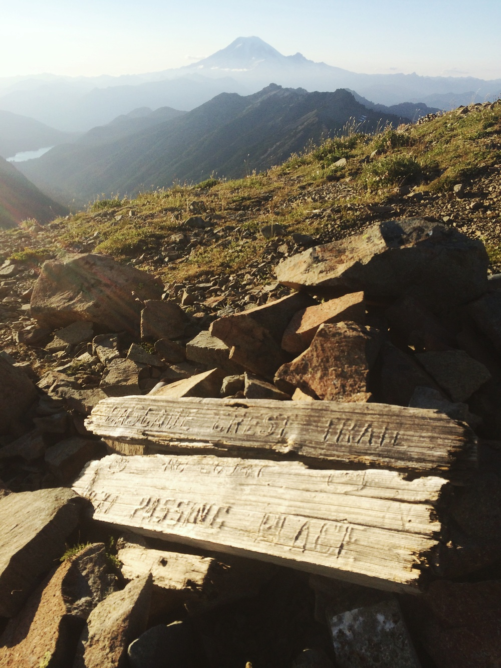 Nature takes it's toll on an old PCT sign. Mt. Rainier in the distance.