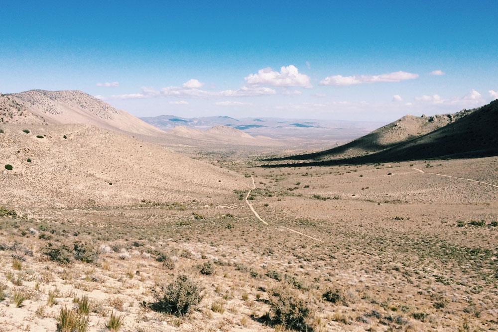 cy-desert.jpg