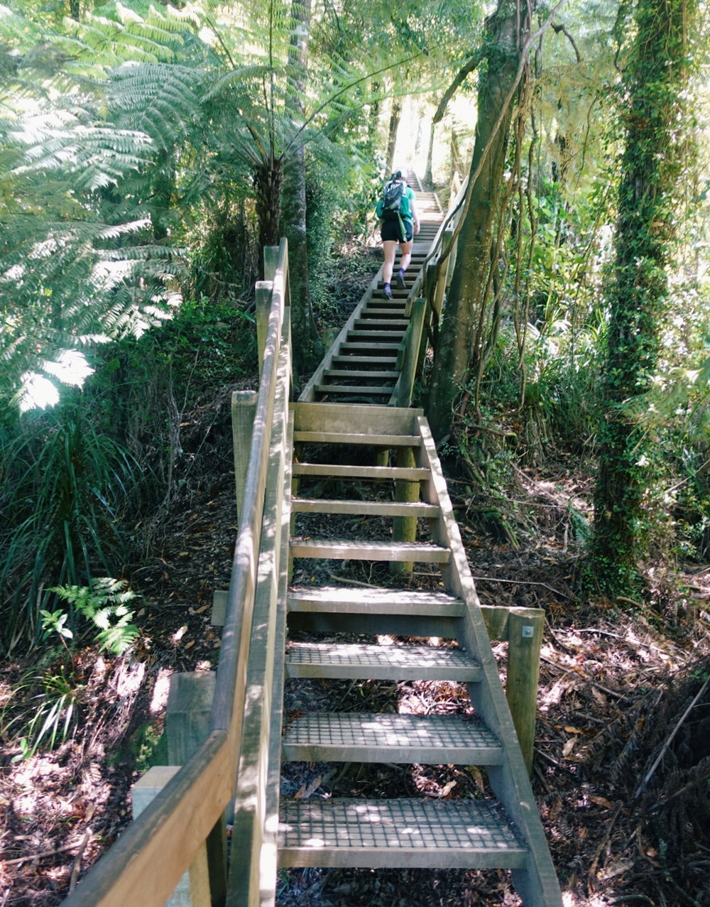 The trails here are generally either insanely rough or insanely built up. This giant staircase was nearly a mile long and climbed over 1000ft.   photo/ Jonathan