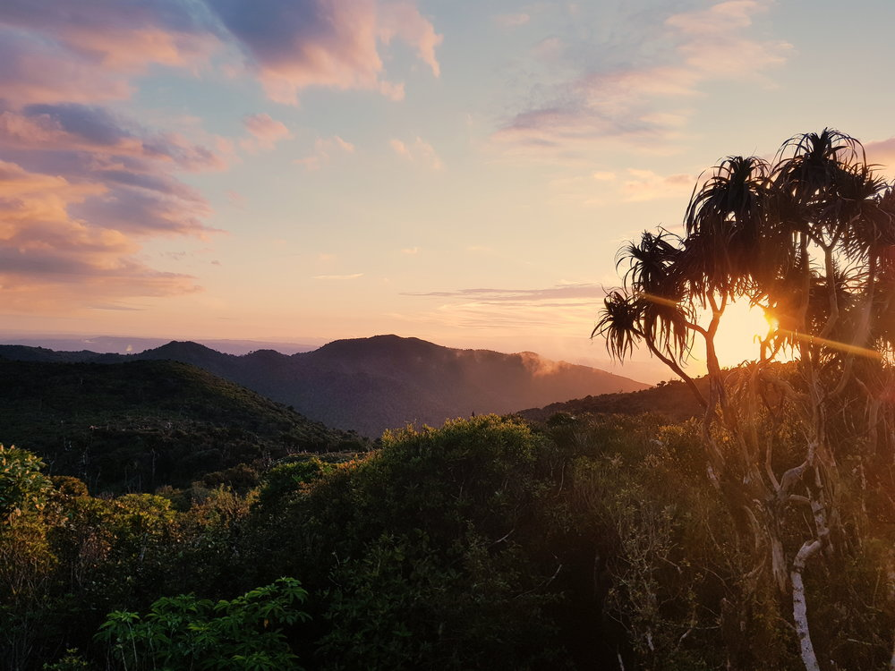 Sunset from the porch at Pahautea Hut.    photo/ Jonathan