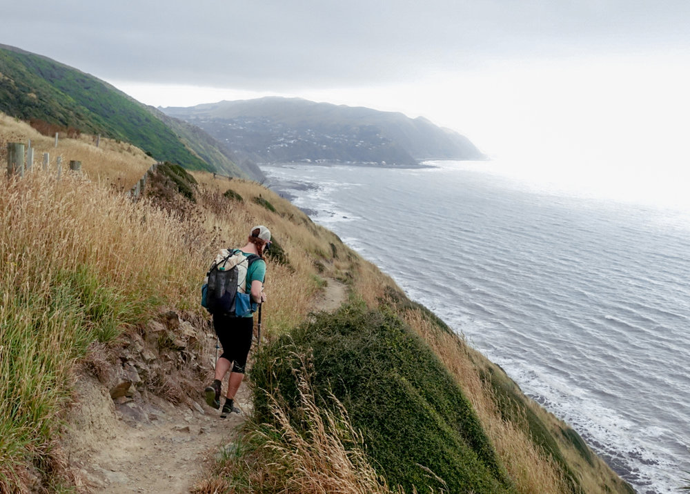 Ocean views from theEscarpment Track coastal walkway near Paekakariki  photo/ Jonathan