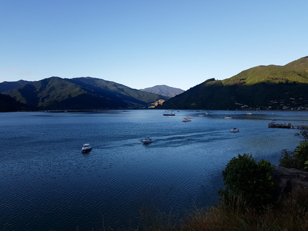 The sun creeps over the hills as we finish up Queen Charlotte Track. It's been a pleasure.   photo/ Jonathan