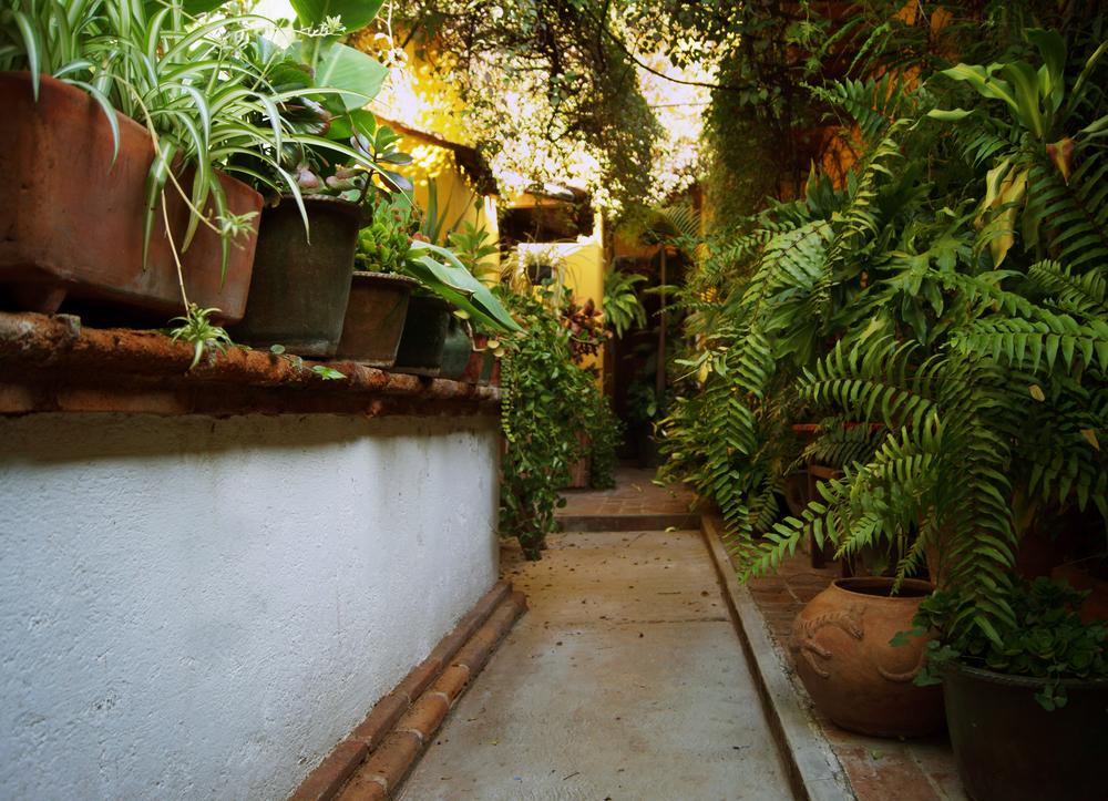 patio4.jpg