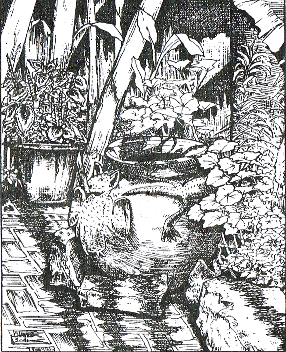 Dibujo a tinta por la artista J. Chávez 1991