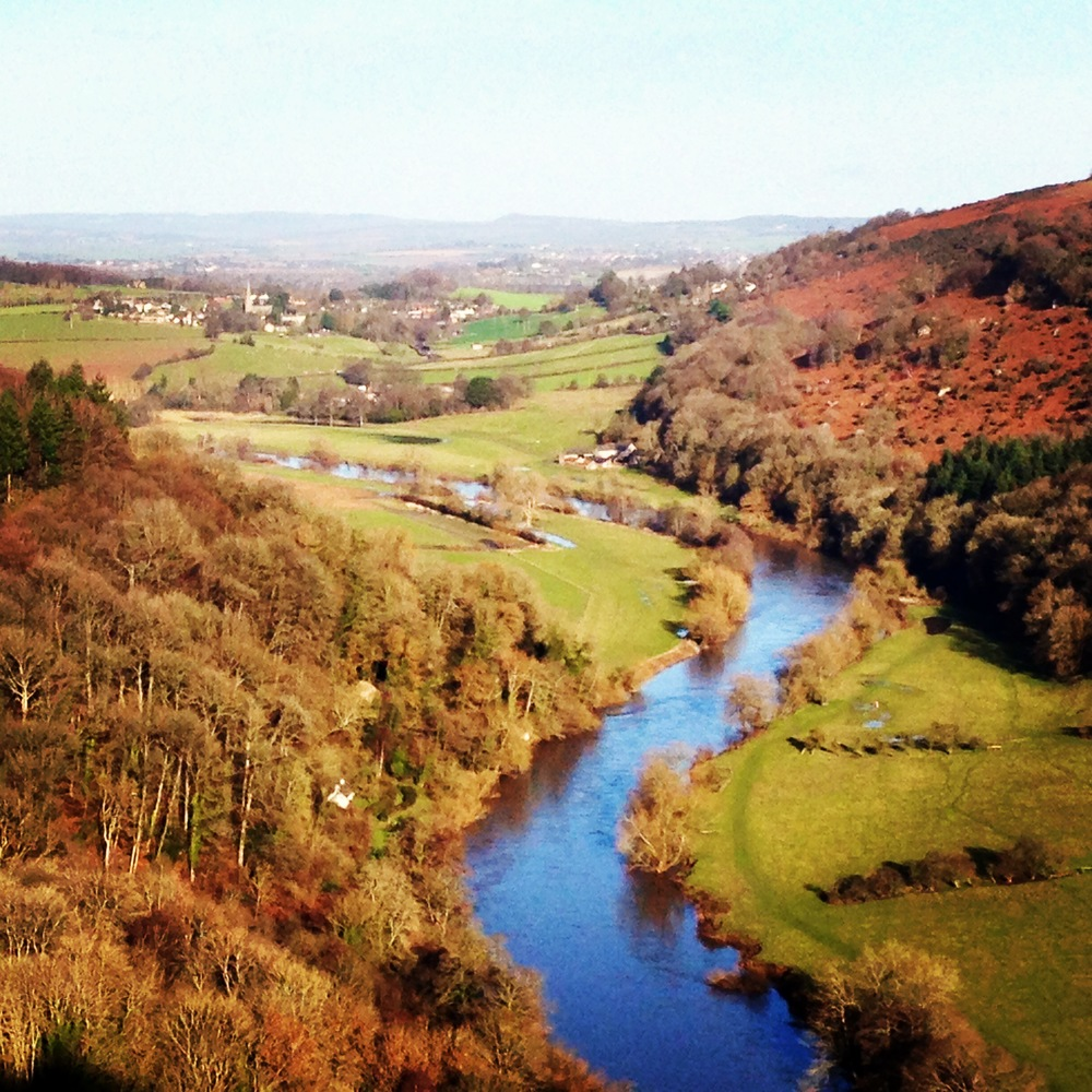 Do like a view (Symonds Yat Rock)