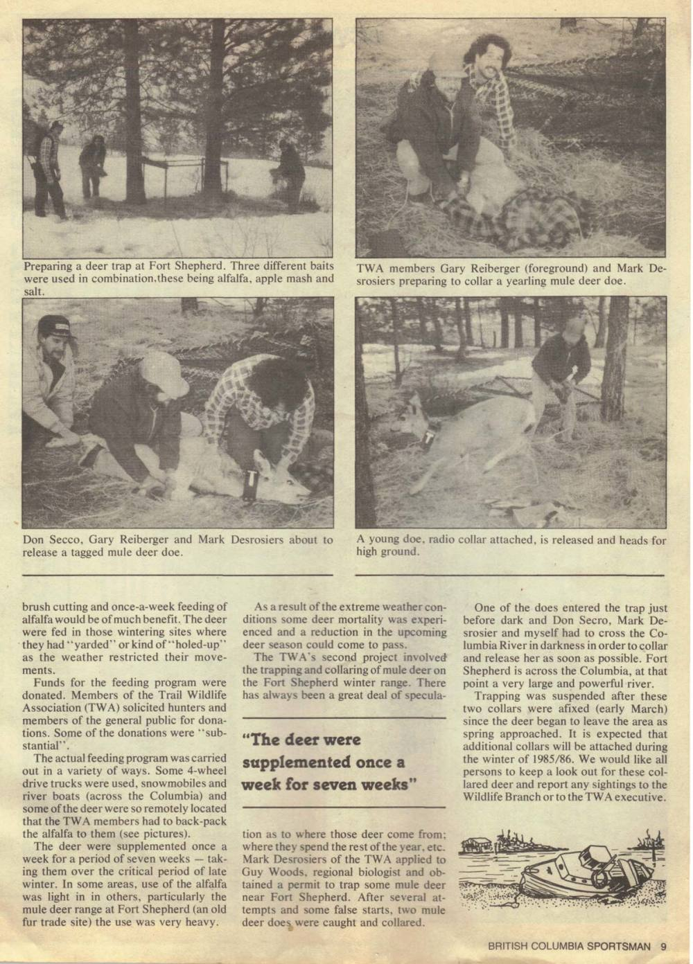 BCWF-Deer-trapping-article-winter-1984-85-bottom.jpg