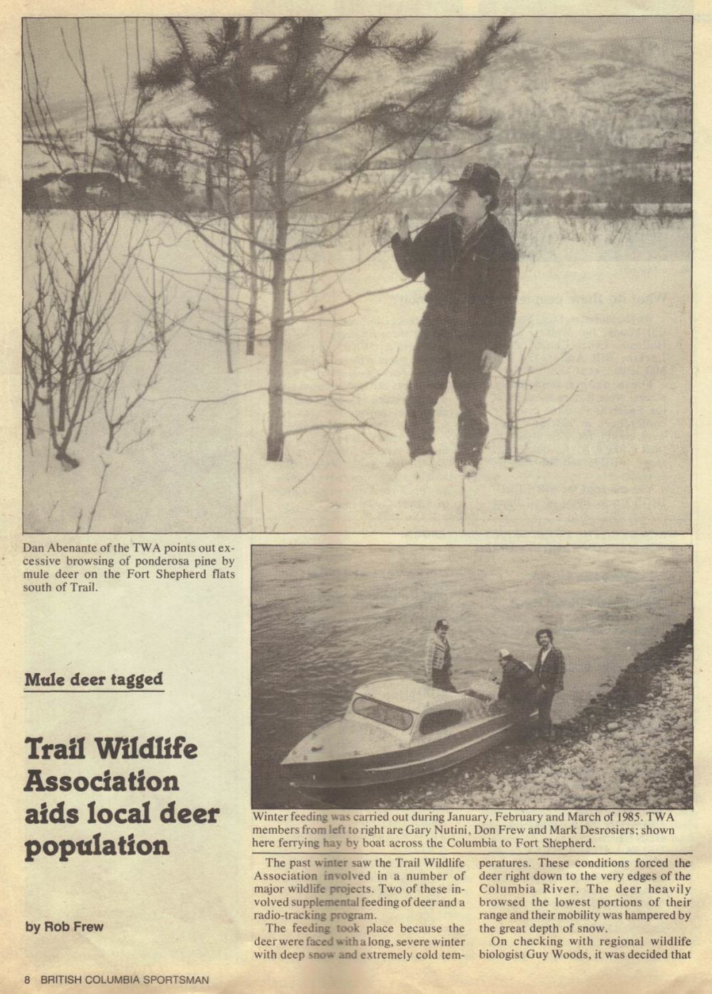 BCWF-Deer-trapping-article-winter-1984-85-top.jpg