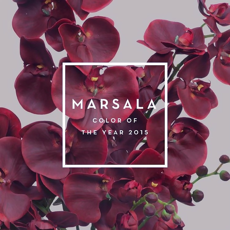 Marsala Colour Candy Image Source jpg Marsala Pantone Color of the Year