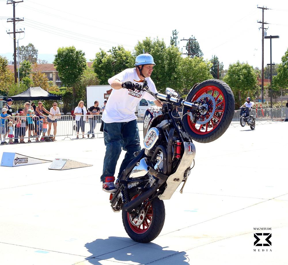 stunt34.jpg
