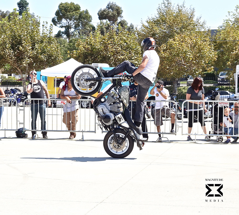 stunt25.jpg