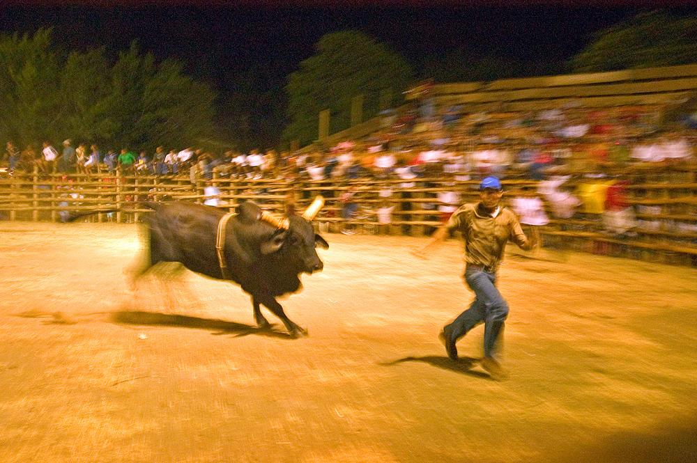 bull-runner-corretiandolo.jpg