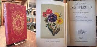 Photo source:http://www.zvab.com/buch-suchen/textsuche/le-langage-des-fleurs