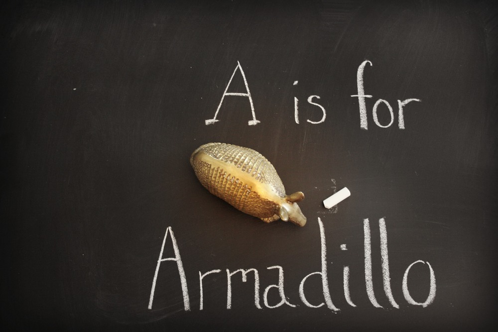 Vintage Brass Armadillo