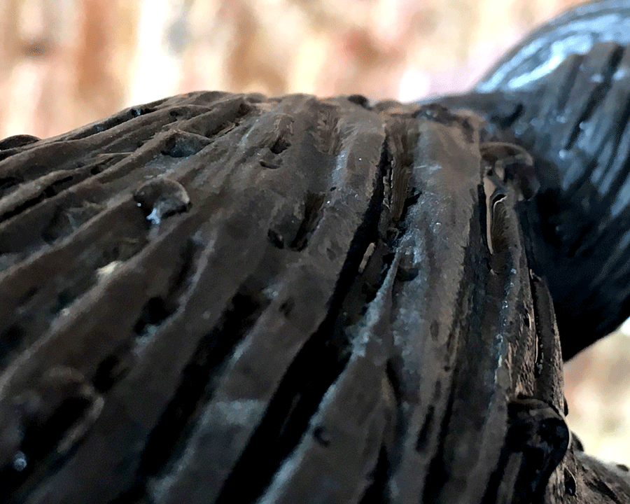 Sculpture Detail © Naida Ginnane 2018 iPhone 6 with Camera + app on Macro  This detail shot of the texture on a bronze sculpture shows the short depth of field with the foreground and background both blurred and only the middle ground in focus.