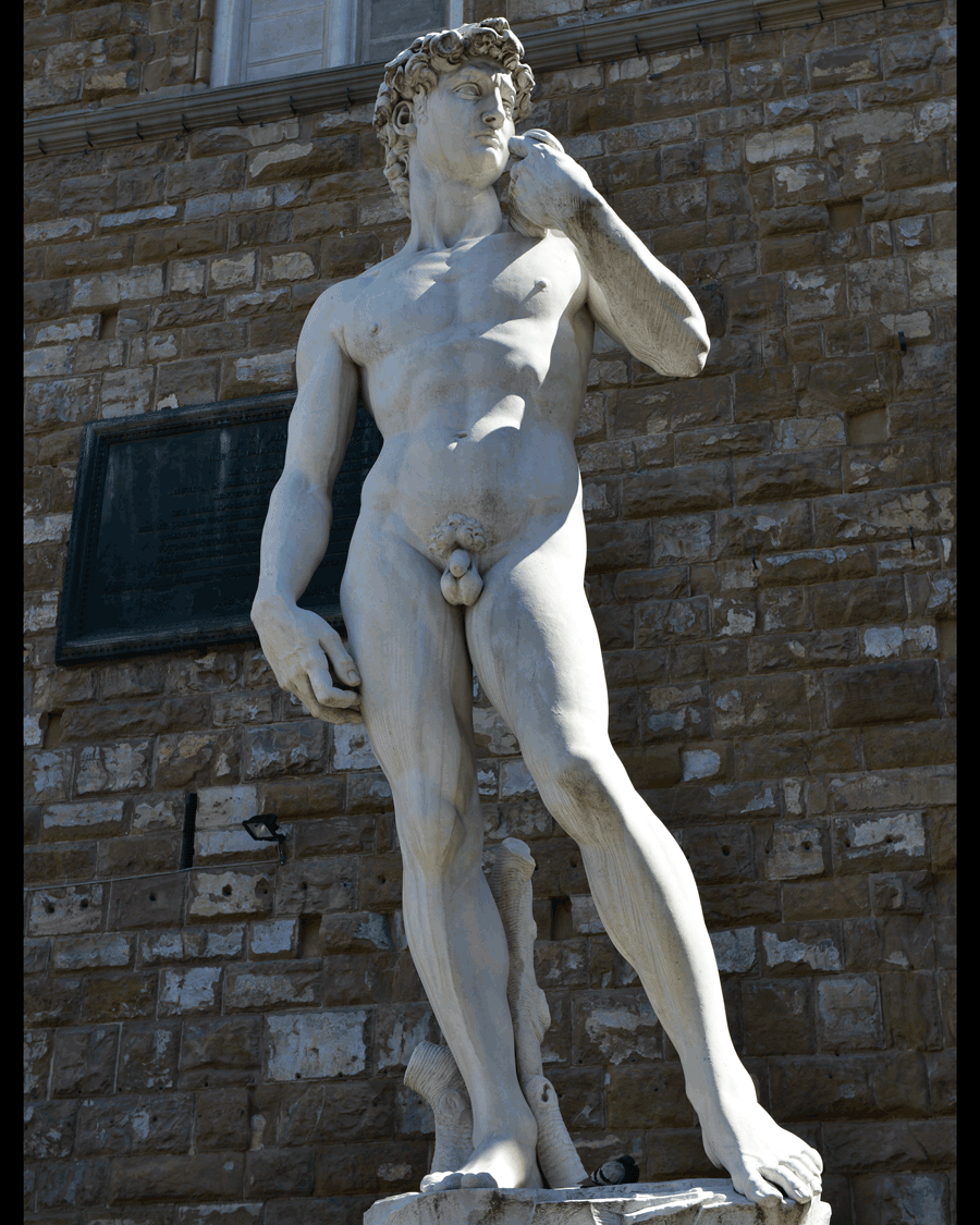 'Outside David' © 2012 Naida Ginnane, Nikon D800     f/ 5.6, 1/250, ISO 100 +33. Michelangelo's David was commissioned by the Florence Cathedral in 1501-4. Designed to represent the biblical hero David, the marble sculpture stands over 4m high. This one is a replica outside the Academia museum in Florence where the original is housed indoors.