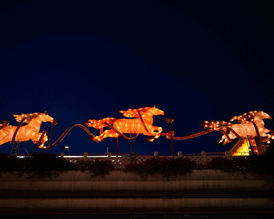 'Horses' © Naida Ginnane 2016, Nikon D800 24-70mm lens,1/ 30, f/, ISO 400.