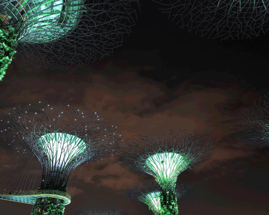 'Green Trees' © Naida Ginnane 2015 Nikon D800 24-70mm lens, 8 sec, f/8, ISO 160.