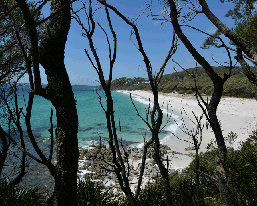 'Beach Rhythm' © Naida Ginnane 2018 Nikon D800, 1/ 200, f/13, ISO 125. Although these dark tree shapes are not exactly the same, their placement at regular intervals provides a visual 'beat'.