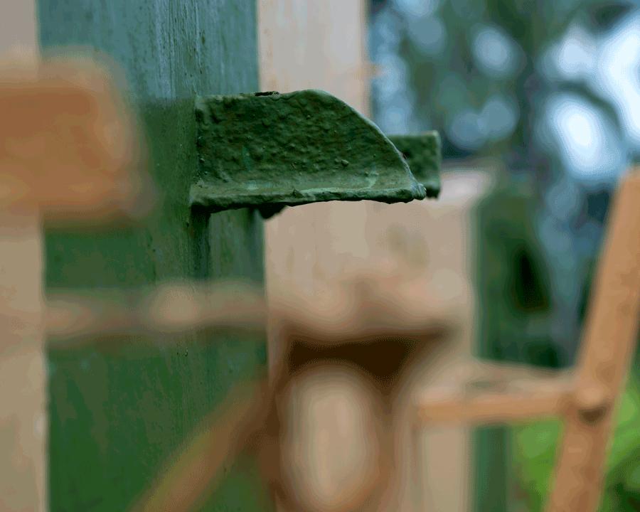 'Green Bokeh' © Naida Ginnane 2015 Nikon D800 105mm lens, 1/400, f5.0, ISO 125, -0.67.