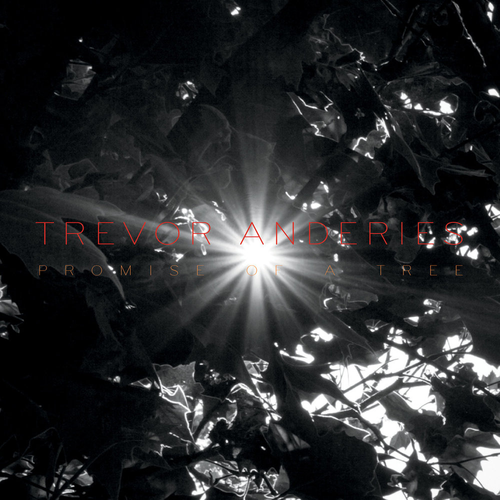 Trevor Anderies | Promise Of A Tree
