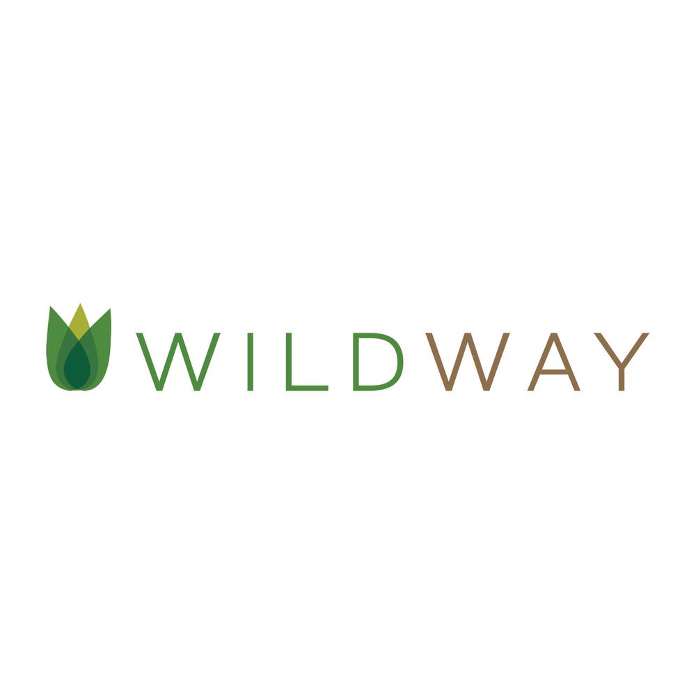 wildway logo_logo_LR.jpg