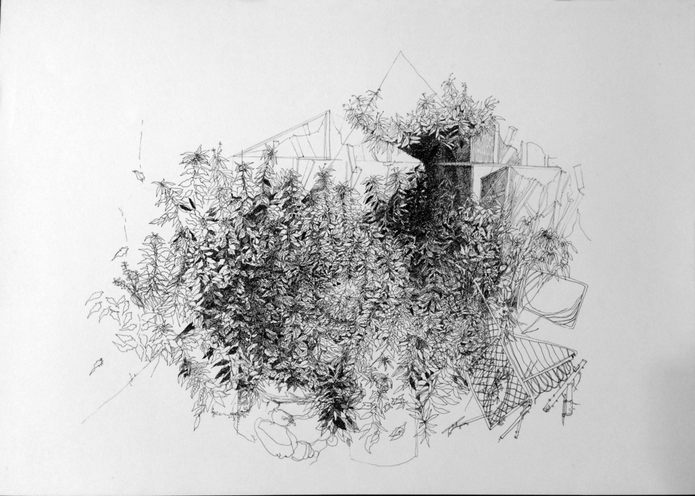 The Backyard 1981  2015, ink on a paper