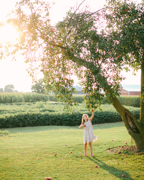 annie & emmaline, gathering apples, jenny haas photography, wedding and lifestyle photographer located in dayton ohio