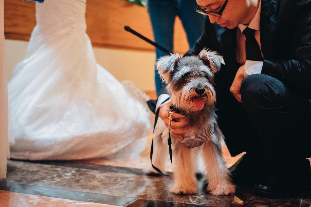 Jocelyn & Chris Wedding Day Highlights (resized for sharing) - 137.jpg
