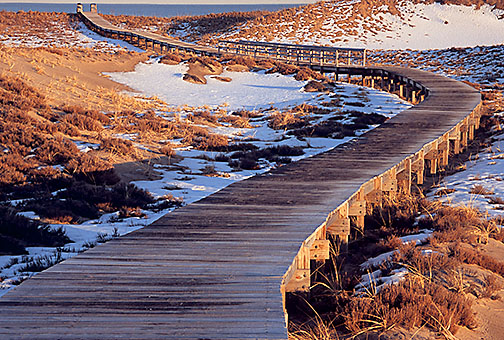 Plum Island Photo Tour