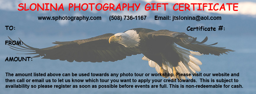 Gift_Certificate_Photo_Tours_Workshops