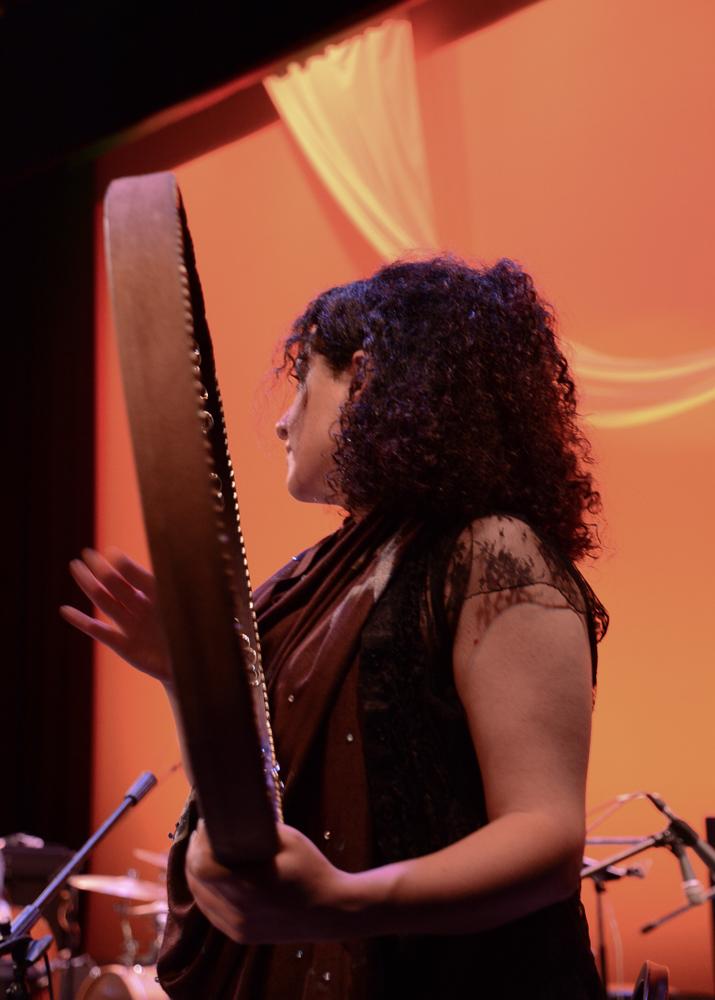 Asheville-Percussion-Festival-2017_Nagmeh-Farahmand_Orange.jpg