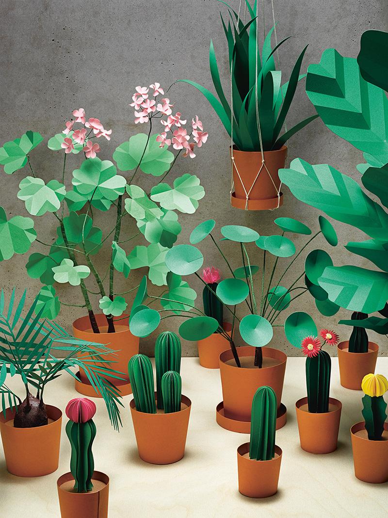 Paper-Plant-Garden.jpg