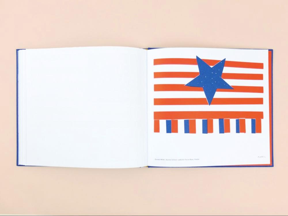 alternate united states flag